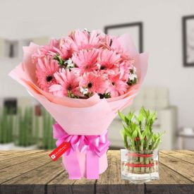 Pink Gerberas with 2 layer bamboo