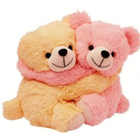 Cute Couple Teddy