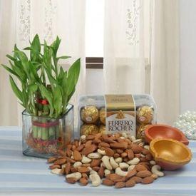 Dry Fruits, Chocolates, Plants