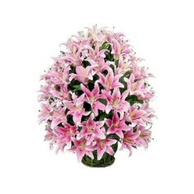 25 Pink lilies with Basket