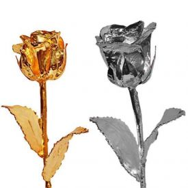 Golden Rose N Silver Rose