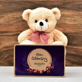 Teddy Bear N Celebration Pack