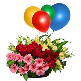 Mixed Gerberas with Balloons