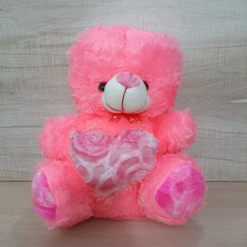 Pick Cute Teddy