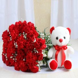 A bunch of 20 red carnation, and (6-inch-cute teddy bear)