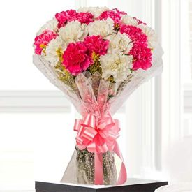 15 Pink and white Carnation with Vase