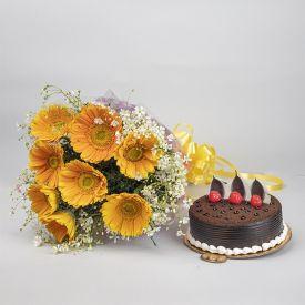 White Gerberas, Chocolate cake