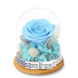 Forever Sky Blue Rose