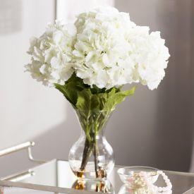 White Carnation With Vase