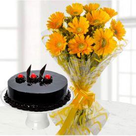 Yellow Gerbera With Truffle Cake