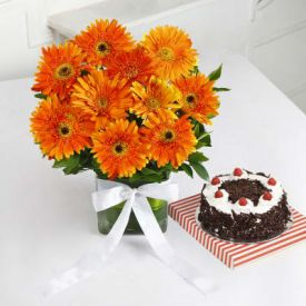 Orange Gerberas With Cake