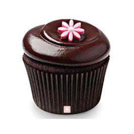 6 set of Chocolate Squared Cupcakes