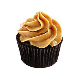 Special Chocolate Cupcakes Delight