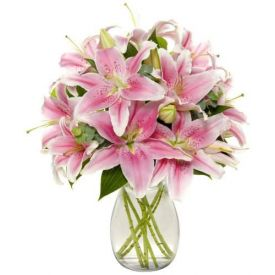 Bunch of Pink lilies in Vase