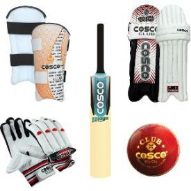 Cosco scorer cricket set