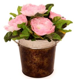 Pink Roses In A Metal Basket