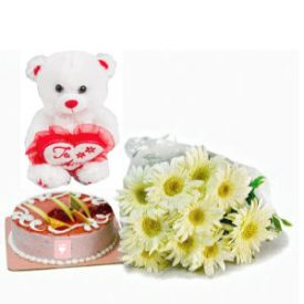 12 White Gerberas with Teddy & Half Kg Vanilla Cake