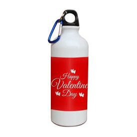 VALENTINE'S DAY Printed Sipper