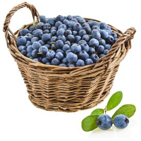 2 Kg Blue Berry (Jamun) with Basket