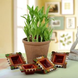 evergreen diwali celebration