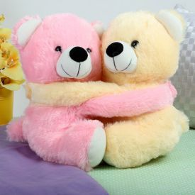 Pink and Yellow Teddy Bear Couple