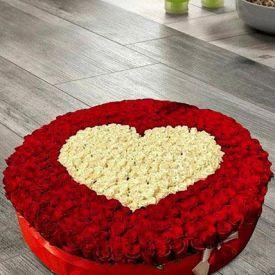 Rosy Garden in Heart Shape